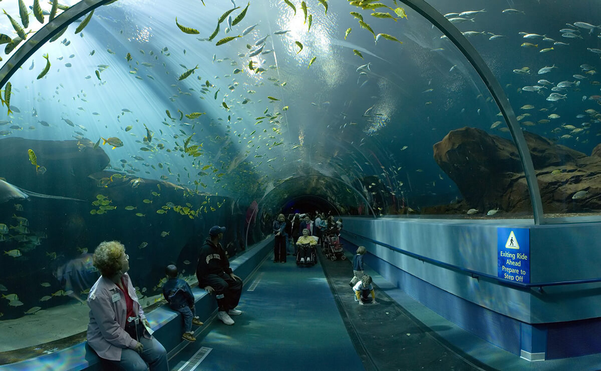 top 10 attractions in sydney australia guidester