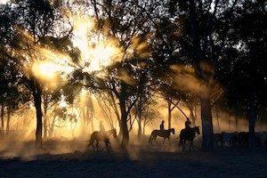 Adventure Sports (incl. ATV, Horseback Riding, Zipline)